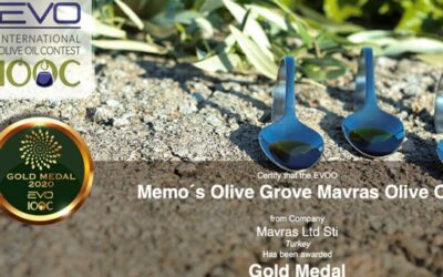 We won the gold medal at the Italian Extra Virgin International Olive Oil competition (EVO-IOOC).
