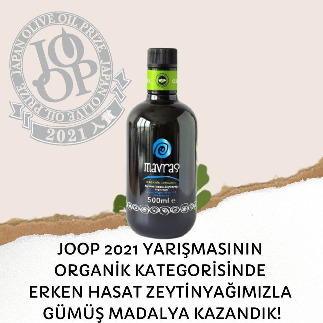 JOOP 2021 Silver